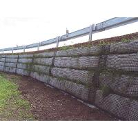 Wholesale Retaining wall reinforcement geogrid from china suppliers