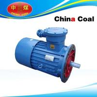 Wholesale DSB Series Flame-proof Three-phase Asynchronous Motor from china suppliers