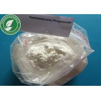 Wholesale USP Standard white Steroid powder Testosterone Propionate for fat burning CAS 57-85-2 from china suppliers