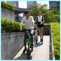 Wholesale 36v Lithium Electric Scooter Folding / Foldable Electric Scooter For Adults from china suppliers