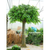 Buy cheap indoor&outdoor park/resturant landsaping artificial banyan tree from wholesalers