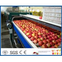 Wholesale Fruit Juice Production Fruit And Vegetable Processing Device With SUS304 / SUS316 Steel from china suppliers