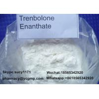Wholesale Light Yellow Powder Trenbolone Steroid Trenbolone Enanthate  Trenb E 10161 - 33 - 8 from china suppliers