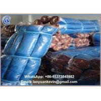 Wholesale Hot Selling 16 X 16 Eyes Nylon Net Sea food Drying Net With best Price from china suppliers