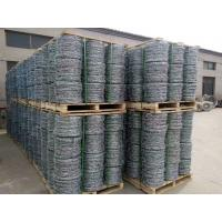 Quality Hot-dipped Galvanized Barbed Wire for protecting of grass boundary, railway, highway, prison. for sale