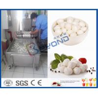 Wholesale EC 10TPD Soft Cheese Making Equipment For Cheese Making Factory / Cheese Making Plant from china suppliers