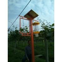Wholesale Electric mosquito killers/solar insect light trap, solar lights with mosquito repellent from china suppliers