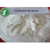 Wholesale White Steroid Powder Deca Durabolin Nandrolone Decanoate For Muscle Building from china suppliers