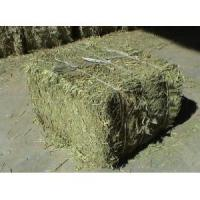 Buy cheap straw particles, hay, soyabean meal, rice bran,hairy vetch, milk vetch from wholesalers