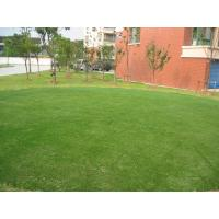 Wholesale 11600Dtex Carpet Artificial Grass 35mm, Gauge 3/8 Landscaping Artificial Turf for Outdoor from china suppliers