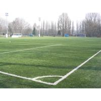 Wholesale Football Field Artificial Turf / artificial grass , eco friendly for exhibition hall from china suppliers