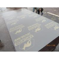 Wholesale KANGAROO' BRAND FILM FACED PLYWOOD, POPLAR CORE, WBP MELAMINE GLUE, BROWN PRINTED FILM from china suppliers