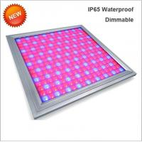 Wholesale 110V Led Full Spectrum Grow Lights , Led Flowering Grow Lights Energy Saving from china suppliers