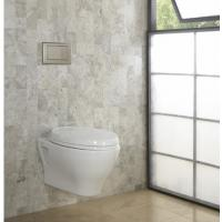 Wholesale For modern bathrooms Timeless style Concealed cistern SoftMood Wall Hung WC With Seat And Cover and Wall Hung Bidet from china suppliers