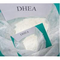 Wholesale Powerful Sex Hormones DHEA Didehydroepiandrosterone For Male And Female from china suppliers