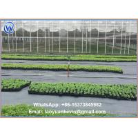Wholesale Ground Cover Net Commercial Grade 880 Sq Ft Roll Landscape & Erosion Control Fabric from china suppliers