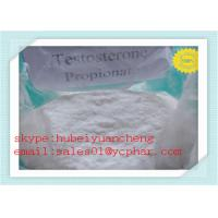 Wholesale Test PRO Anabolic Steroids Testosterone Propionate for Muscle Building CAS No 57-85-2 from china suppliers