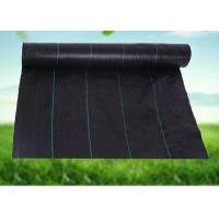 China UV Resistance Garden Weed Control Fabric Black - Green Weed Control Barrier on sale