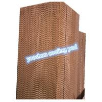 China 5090/6090/7090 farm/factory/greenhouse evaporative cooling pad on sale