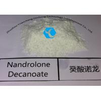 Wholesale Natural Muscle Growth Bulking Deca Durabolin Steroid Nandrolone Decanoate White Powder from china suppliers