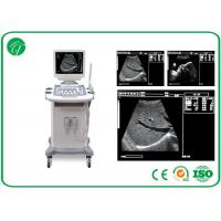 Wholesale 5 level Full Digital Trolley b mode ultrasonography , 14 Inch ultrasound imaging equipment from china suppliers