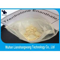 Quality Healthy Trenbolone Enanthate Powder Legal Muscle Steroid Cutting Cycle CAS 472-61-546 for sale