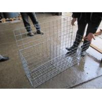 Wholesale Galvanized Gabion Wire Mesh  (direct Factory ) from china suppliers