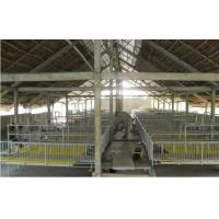 Wholesale Cellulose Evaporative Cooling Pad In Saudi Arabia Greenhouse Cooling System from china suppliers