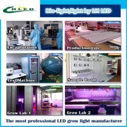 Shenzhen Lv Heng LED Technology Co.,Ltd