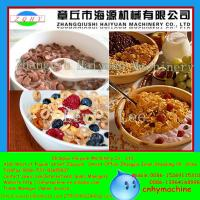 Wholesale Shanghai CE Certificate Automatic Roasted Breakfast Cereal Corn Flakes Extrusion Machine from china suppliers