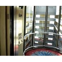 Quality 1- 1.75m/s scenic spot capsule lifts / sightseeing elevato with PVC Floor for sale