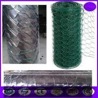 Wholesale price of  Plastic Coated Chicken Wire Mesh / Low Carbon galvanised wire mesh rolls from china suppliers