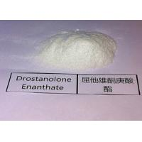 Wholesale Bulking Cycle Steroids Drostanolone Enanthate Masteron Enanthate For Mass Muscle Growth from china suppliers