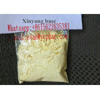 Wholesale Legal Male Sex Hormones , Pure Xinyang Powder For Erectile Dysfunction Treatment from china suppliers