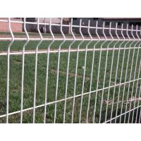 Wholesale Hot Dipped Galvanized Steel Wire Mesh Fence , Electro Welded Garden Edging Fence from china suppliers