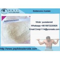 Wholesale Muscle Growth White Raw Steroid Powders Boldenone Acetate With 99% Purity from china suppliers