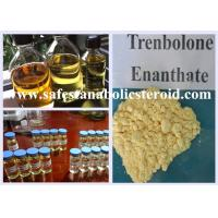 Quality Muscle Building Trenbolone Steroid Trenbolone Enanthate Steroids For Cutting Cycle for sale