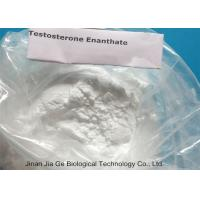 Wholesale Testosterone Anabolic Steroid High Grade with 99% purity Testosterone Enanthate CAS 315-37-7 from china suppliers