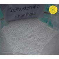 Anabolic Steroide Testosterone Enanthate