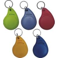 Wholesale Abnormal shape ID/IC keychain, Customize special shape ID/IC key ring from china suppliers