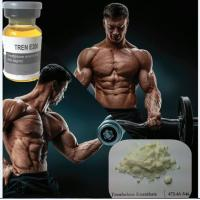 Wholesale CAS 10161-33-8 Weight Loss Powders / Male Steroid Hormones Yellow Crystalline Powder from china suppliers