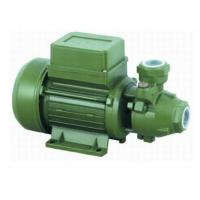 Wholesale 1HP 0.75KW Surface Water Pump With Peripheral Impeller / Cast Iron Body from china suppliers