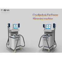Wholesale Cryolipolysis Slimming Machine For Home Use , Cryolipolysis Fat Freezing Machine from china suppliers