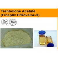 Wholesale CAS 10161-34-9 Trenbolone Acetate Injection Oil Liquid Muscle Growth Supplements from china suppliers
