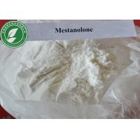 Wholesale CAS 521-11-9 Medical Grade Muscle Growth Anabolic Steroid Mestanolone Ermalone from china suppliers