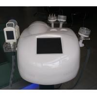 Wholesale Cryolipolysis Slimming Machine / Cryolipolysis Fat Freezing weight loss equipment from china suppliers