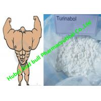 Wholesale Oral Turinabol powder anabolic androgen steroids Reduce SHBG muscle Cycle from china suppliers