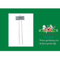 Metal Flower Garden Plant Markers /  Labels Silver Color Zinc Coated