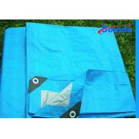 Wholesale Digital Printing Waterproof Tarpaulin Sheet , 160g/sqm Weight HDPE Plastic Sheet from china suppliers