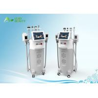 Wholesale Pulse width 0.5-10s weight loss  equipment  / cryolipolysis slimming machine for beauty Spa from china suppliers